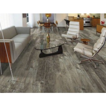 Shaw ENDURA 512C PLUS Luxury Vinyl Plank Flooring