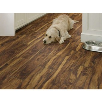 "Shaw Floorte Pro Paragon 5"" Plus Vinyl Flooring"