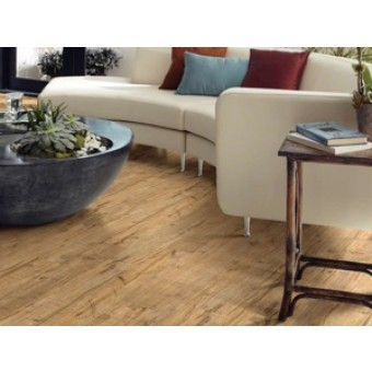 Shaw Atlantic Station Vinyl Flooring